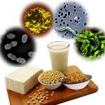 probiotic-food